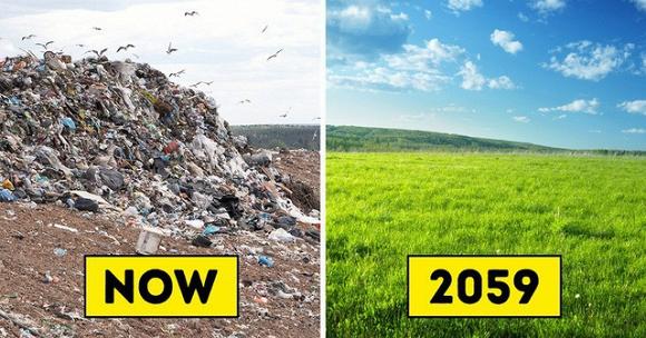sâu ăn nhựa, rác thải,